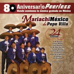 Mariachi Guadalajara de Silvestre Vargas y Mariachi México: Gato montes