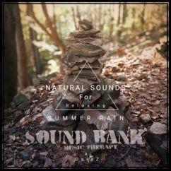 DaveZ: Sound Therapy Summer Rain