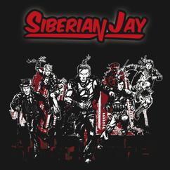 Siberian Jay: Heaven