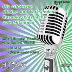 Andre Wolff: Hitpark Edition, Vol. 5