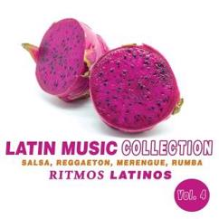 Various Artists: Latin Music Collection: Ritmos Latinos, Vol. 4 (Salsa, Reggaeton, Merengue, Rumba)