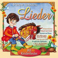 Various Artists: Meine liebsten Lieder