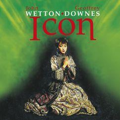 Icon: Icon