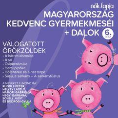 Various Artists: Magyarország Kedvenc Gyermekmeséi + Dalok 6. (Válogatott Örökzöldek)