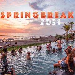 Various Artists: Springbreak 2021