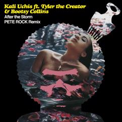 Kali Uchis, Tyler, The Creator, Bootsy Collins: After The Storm