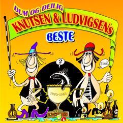 Knutsen & Ludvigsen: Dum og delig - Knutsen & Ludvigsens beste (digital versjon)
