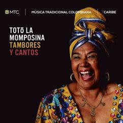 Totó La Momposina: Tambores y Cantos