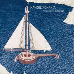 Vincent Beer-Demander: Mandolinomania