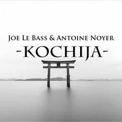 Joe Le Bass & Antoine Noyer: Kochija