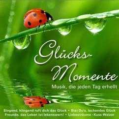 Various Artists: Glücks-Momente