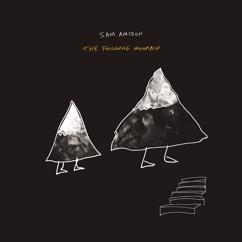 Sam Amidon: The Following Mountain