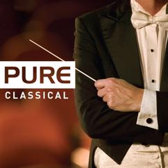 Various Artists: Pure Classical