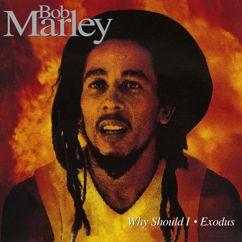 Bob Marley & The Wailers: Why Should I/Exodus