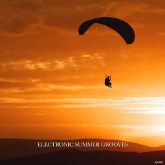 Various Artists: Electronic Summer Grooves