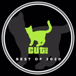Various Artists: Best of 2020