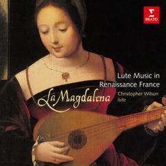 Christopher Wilson: La Magdalena: Lute Music in Renaissance France