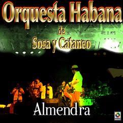 Orquesta Habana De Sosa Y Cataneo: Almendra