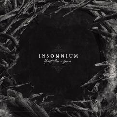 Insomnium: Wail of the North