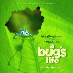 Randy Newman: The Bird Flies