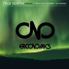 Erconomics: True North