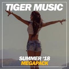 Various Artists: Summer Megapack '18