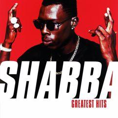 Shabba Ranks feat. Chevelle Franklin: Mr. Loverman