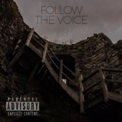 Winston Shiver feat. Ynikelevra: Follow the Voice