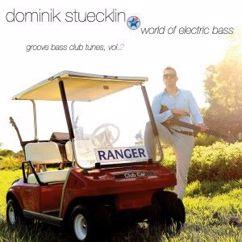 Dominik Stuecklin: World of Electric Bass groove bass club tunes, Vol. 2