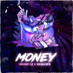 NINJAROSE & ICEWIZARD: Money