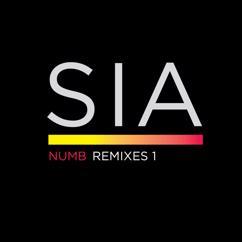 Sia: Numb Remixes 1