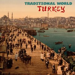 Various Artists: Traditional World: Turkey