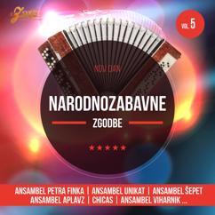 Various Artists: Nov dan, narodnozabavne zgodbe 5
