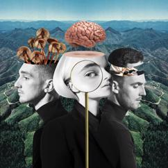 Clean Bandit, Anne-Marie: Should've Known Better (feat. Anne-Marie)