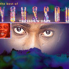 Youssou N'Dour: Best Of Youssou N'dour