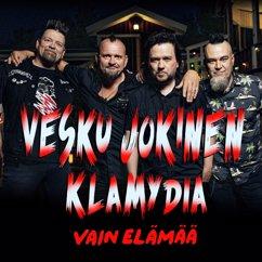 Vesku Jokinen, Klamydia: Enkeleitä yövuorossa (Vain elämää kausi 11)