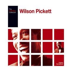 Wilson Pickett: Call My Name, I'll Be There (2006 Remaster; Single Version)