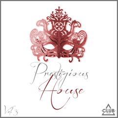 Various Artists: Prestigious House, Vol. 3