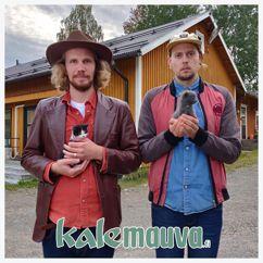 Kalevauva.fi: Lupaa ettet hylkää mua #kissakriisi