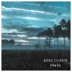 Markus Steinberg: A New Day