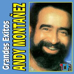 Andy Montañez: Grandes Éxitos
