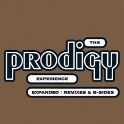 The Prodigy: Experience: Expanded (Remixes & B-sides)