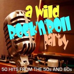 Various Artists: A Wild Rock 'n' Roll Party: 50 Hits from the 50s and 60s