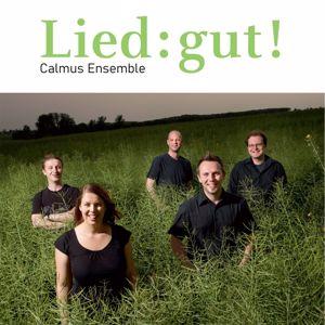 Calmus Ensemble: Lied:gut!
