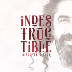 Diego El Cigala: Indestructible