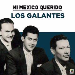 Los Galantes: Mi Mexico Querido