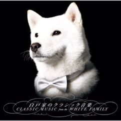 White Orchestra: Classic Music from the White Family