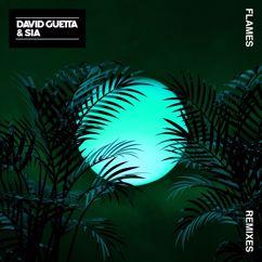 David Guetta & Sia: Flames (Remixes 2)