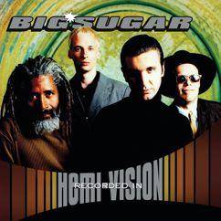 Big Sugar: Diggin' A Hole (Acoustic Version)
