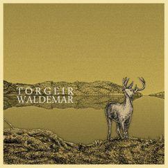Torgeir Waldemar: Torgeir Waldemar
